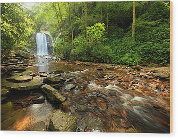 Wood Print featuring the photograph Looking Glass Falls by Doug McPherson