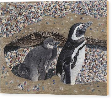 Looking Out For You - Penguins Wood Print by Patricia Barmatz
