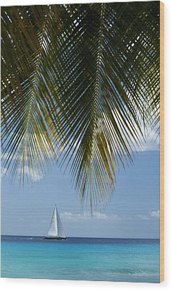 Looking Through Palm Trees To Large Wood Print by Axiom Photographic
