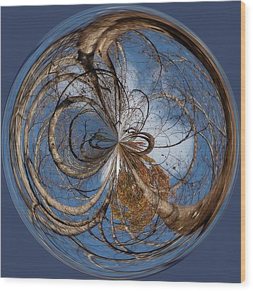Looking Up Orb Wood Print