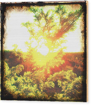 Los Alamos Sunset Wood Print by Paul Cutright