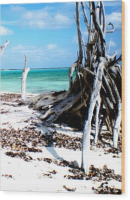 Wood Print featuring the photograph Cozumel Mexico  Paradise On Earth by Danielle  Parent