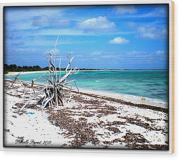 Wood Print featuring the photograph Lost Paradise The Sequel 2 by Danielle  Parent