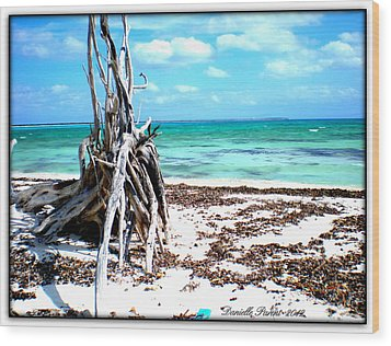 Wood Print featuring the photograph Lost Paradise The Sequel 3 by Danielle  Parent