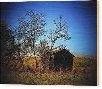 Lost Shed Wood Print by Joyce Kimble Smith