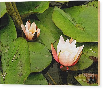Lotus B Position Wood Print by Charlie Spear