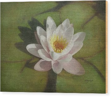 Lotus Blossom Textured Wood Print by Cindy Wright