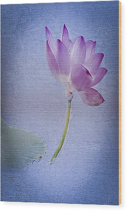 Lotus Dream Wood Print by Jill Balsam