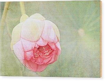 Lotus Wood Print by Margaret Hormann Bfa