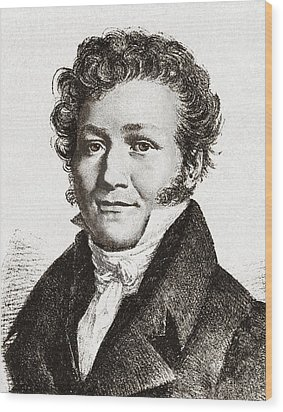 Louis-jacques Thenard, French Chemist Wood Print by Sheila Terry