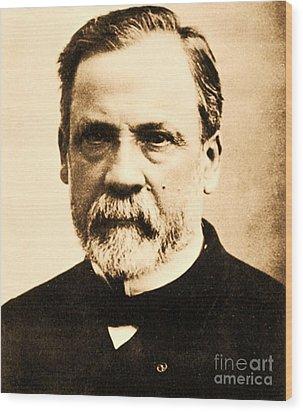 Louis Pasteur Wood Print by Pg Reproductions