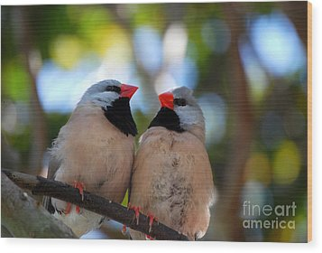 Wood Print featuring the photograph Love Birds by Linda Mesibov