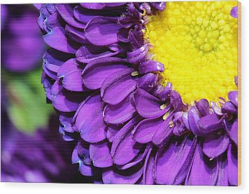 Love The Purple Flower Wood Print