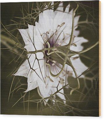 Love's Thorns Wood Print