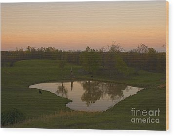 Loving The Sunset Wood Print by Cris Hayes