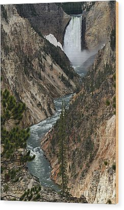 Wood Print featuring the photograph Lower Falls And Yellowstone River by Living Color Photography Lorraine Lynch