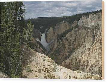 Wood Print featuring the photograph Lower Falls Of Yellowstone by Living Color Photography Lorraine Lynch