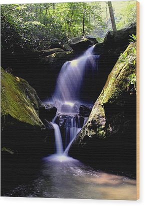 Lower Grotto Falls Wood Print by Frozen in Time Fine Art Photography