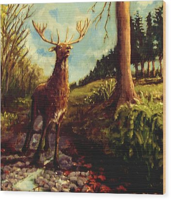 Lowland Stag Wood Print by Graham Keith
