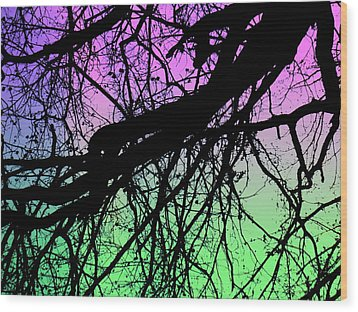 Lunar Silhouette Wood Print by Amy Sorrell