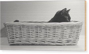 Lurking In The Basket Wood Print by Bernadette Kazmarski