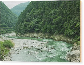 Lush Green Volcanic River Gorge, Kyoto, Japan Wood Print by Ippei Naoi