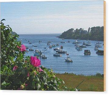 Mackerel Cove I Wood Print