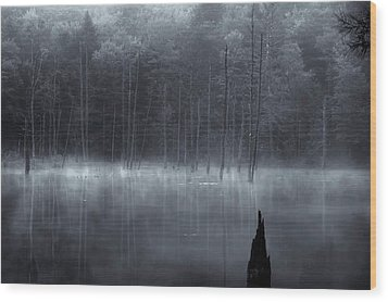 Wood Print featuring the photograph Madame Sherri's Pond II by Tom Singleton