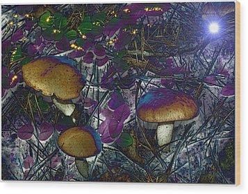 Magic Mushrooms Wood Print by Barbara S Nickerson