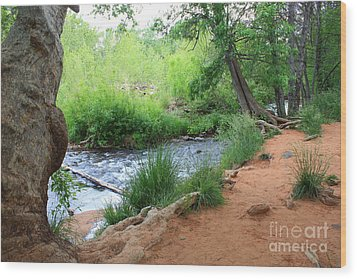 Magical Trees At Red Rock Crossing Wood Print by Carol Groenen