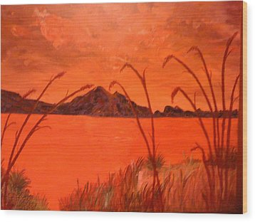 Magnetic Island Sunset Wood Print by Judi Goodwin