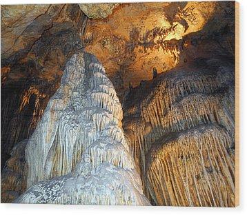 Magnificence Wood Print by Lynda Lehmann