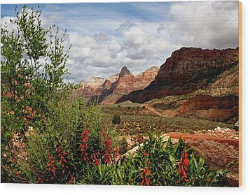 Magnificent Vistas In Zion Wood Print
