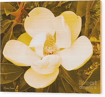 Magnolia In Color Wood Print by Lorraine Louwerse