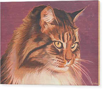 Maine Coon Portrait Wood Print by Shawn Shea
