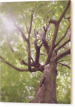 Wood Print featuring the photograph Majestic Maple by Brooke T Ryan