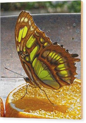 Malachite And Orange Wood Print