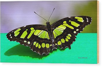 Wood Print featuring the photograph Malachite by Susi Stroud