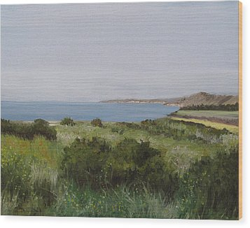 Malibu Bluffs Wood Print by Cristin Paige