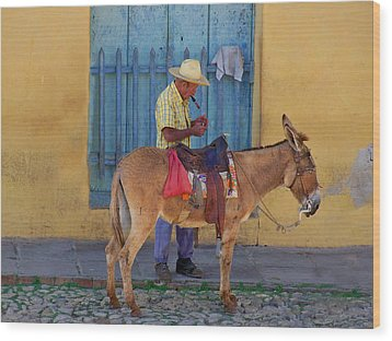 Wood Print featuring the photograph Man And A Donkey by Lynn Bolt