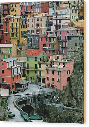 Manarola Houses On The Cinque Terre Wood Print by Greg Matchick