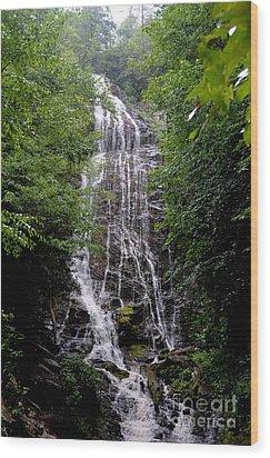 Mango Falls Wood Print by Randy Edwards