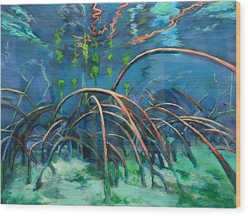Mangrove Roots  Wood Print by Scout Cuomo