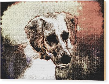 Mans Best Freind Wood Print by Bill Cannon