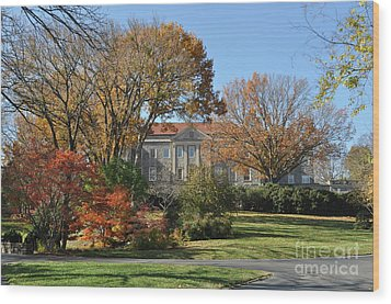 Mansion In The Woods Wood Print by Denise Ellis