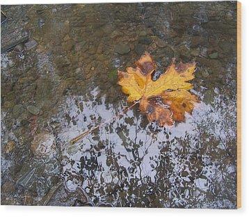 Maple Leaf Reflection 3 Wood Print