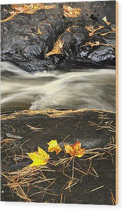 Maple Leaves And Water Wood Print by Douglas Pike