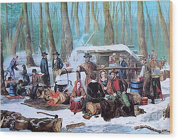 Maple Sugaring, 1872 Wood Print by Photo Researchers