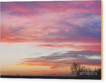 March Countryside Sunrise  Wood Print by James BO  Insogna