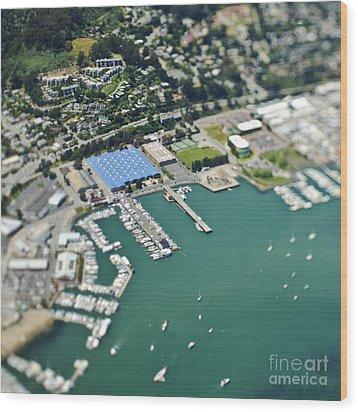 Marina And Coastal Community Wood Print by Eddy Joaquim